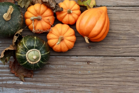 thanksgiving harvest: Autumn pumpkins with leaves  on wooden board