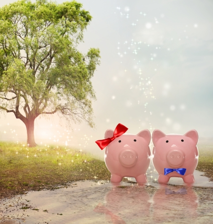 river bank: Piggy bank couple in a fantasy landscape