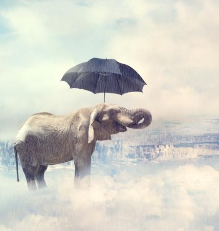 Een olifant die op de mystieke wolken