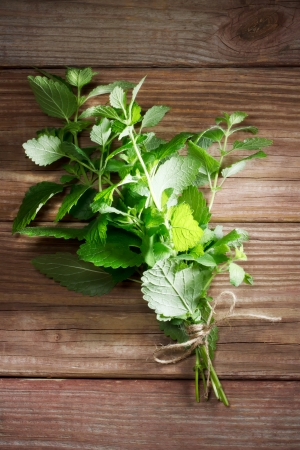Fresh mint bunch on a rustic table in late day sunlight Stock Photo - 20214963