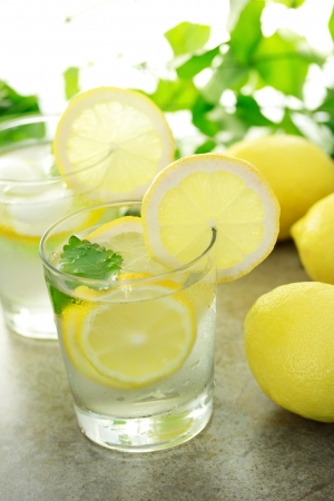 lemon water: Cold lemon water with fresh lemons with green plants Stock Photo