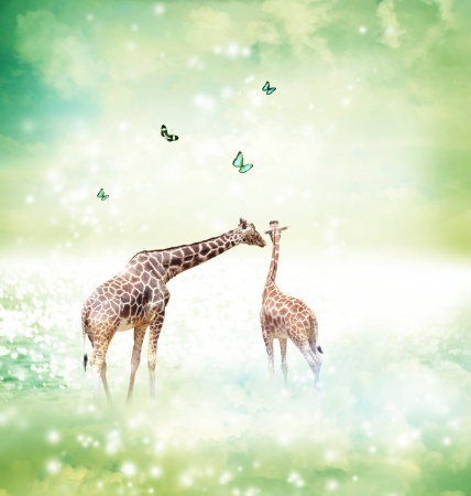 Two Giraffes, mother and child in friendship or love theme image at a fantasy landscape photo