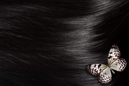 Healthy black hair with a Paper Kite butterfly - close up image