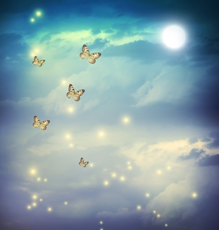 magical background: Butterflies in a fantasy night landscape with stars and moon Stock Photo