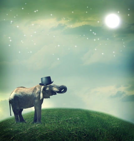 Elephant with top hat on fantasy landscape under the moon