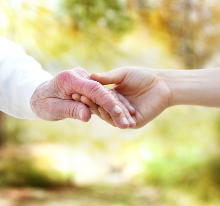 Handen van de holding met senior op de herfst geel gebladerte