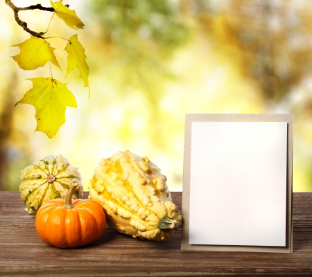 Squashes and greeting card on shinning fall background