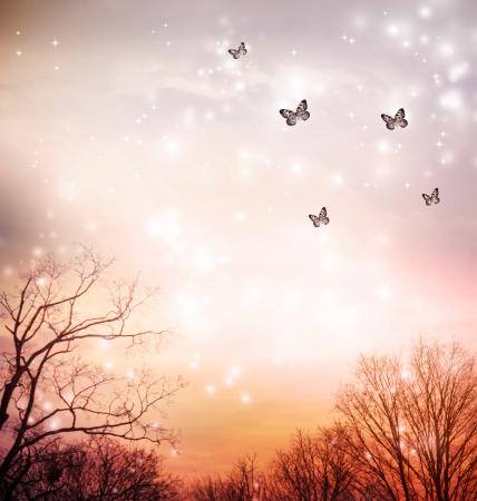 Kleine Schmetterlinge über den Bäumen in den roten Himmel Hintergrund Standard-Bild - 23292099