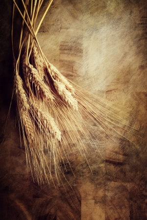Ears of wheat on rustic wooden table photo