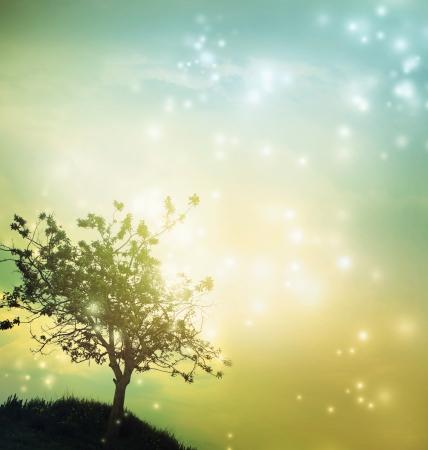 hintergrund gr�n gelb: Baum-Silhouette auf gr�n gelb gef�rbt D�mmerung Lizenzfreie Bilder