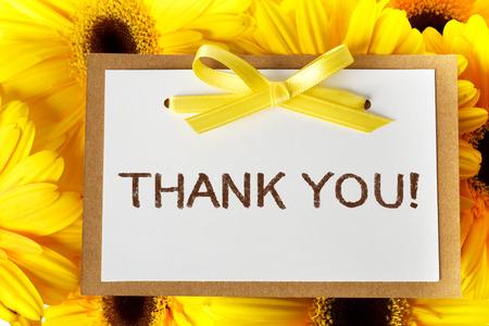 agradecimiento: Gracias tarjeta de mensaje con gerberas amarillas Foto de archivo