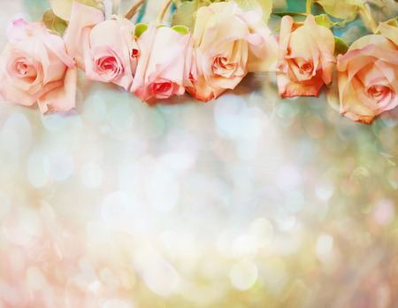 Beautiful pink roses in a vintage style Stock Photo