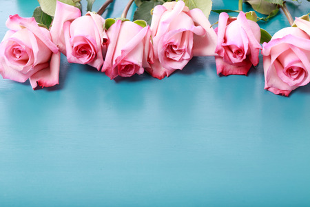 Beautiful pink roses on turquoise blue wooden board photo