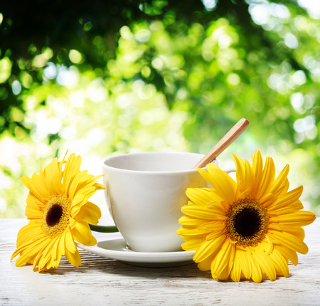 coffee table: Coffee cup with yellow gerberas over shiny tree leaves background Stock Photo
