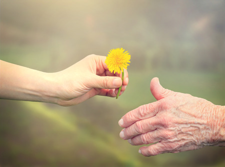 Young woman giving a dandelion to senior woman photo