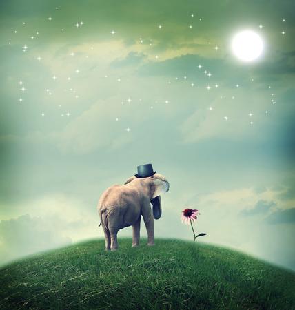 Surrealistische olifant met een hoed staren naar een bloem Stockfoto