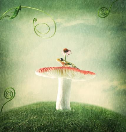 Cute little froggy on the magical mushroom photo