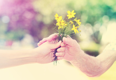 flowers in the garden: Elderly and young woman holding yellow flowers outside Stock Photo