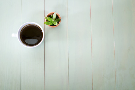 Cup of coffee and small plant in a pot on pastel green background Фото со стока