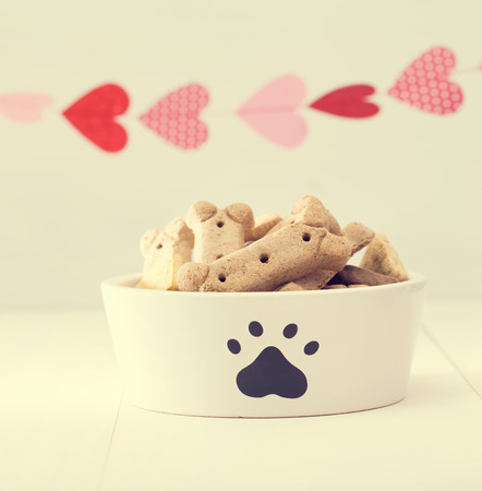 treat like a dog: Dog treats on a white bowl with a garland of hearts