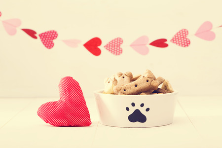 treat like a dog: Dog treats on a white bowl with a heart cushion with a garland of hearts