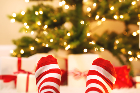red carpet background: Feet with striped socks with Christmas gift boxes under the tree