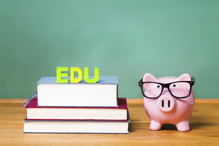 edu: Pink Piggy bank with chalkboard in the background as concept image of the costs of education