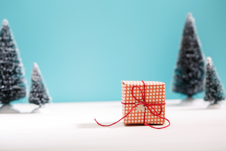 Little handmade gift box in a snow covered miniature evergreen forest Banque d'images