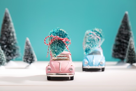 small field: Car carrying a Christmas tree in a snow covered miniature evergreen forest Stock Photo