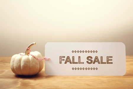 food sales: Fall Sale message with a white small pumpkin Stock Photo