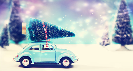snow fields: Car carrying a Christmas tree in a snow covered miniature evergreen forest Stock Photo