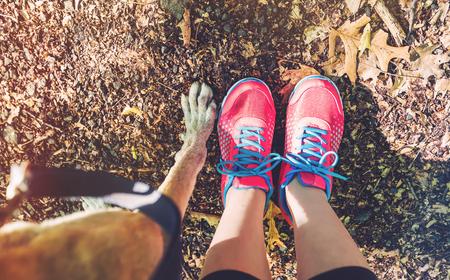 젊은 여자와 그녀의 그레이하운드 숲 흔적에 스톡 콘텐츠