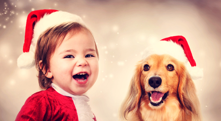 dog christmas: Happy Toddler girl and Dachshund dog with Santa hats smiling