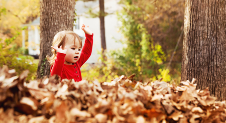 pile of leaves: Toddler girl playing outside in a pile of autumn leaves at sunset