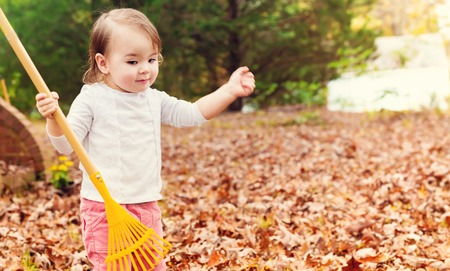 Toddler girl raking leaves in autumn Stock Photo