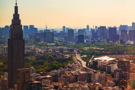View of Shinjuku, Tokyo, Japan from above
