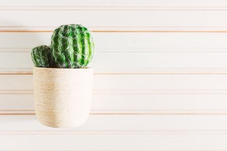 decoracion mesas: Maceta de cactus planta de la casa en la mesa de madera