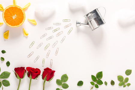 Rose blossoms and watering can craft image Stock Photo