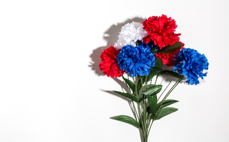 11th: USA holiday flower decorations on a white background flat lay Stock Photo