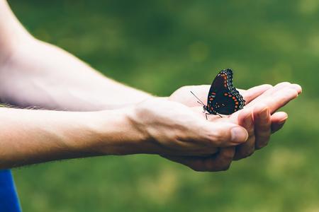 나비 외부 사람의 손에 자리 잡고 스톡 콘텐츠