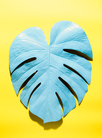 Painted tropical monstera leaf with hard shadow on a yellow background Banque d'images