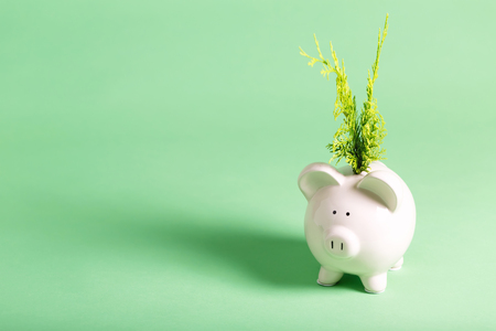 White piggy bank with glasses on a muted green background Stock Photo