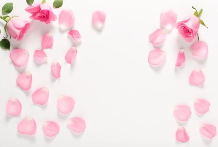 Rosen und Blätter Draufsicht Standard-Bild - 83477133