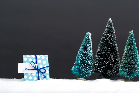 Little handmade gift box with miniature Christmas trees