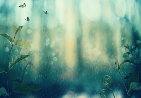 Butterflies and plants in a mystical woods in rain Foto de archivo