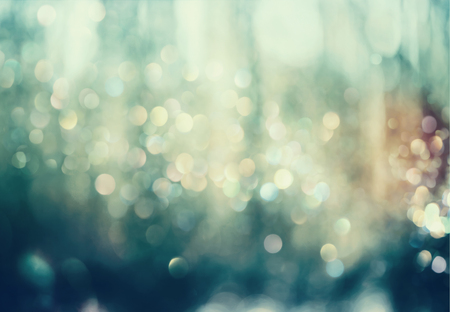Beautiful abstract shiny light and glitter in a woods
