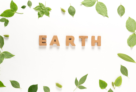 Earth text with green leaves top view flat lay