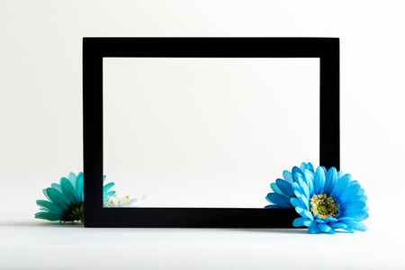Black boarder frame with blue flower on a white background