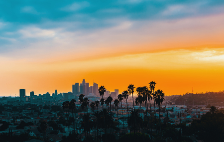 Downtown Los Angeles skyline at sunset with palm trees in the foreground Stok Fotoğraf - 100605738