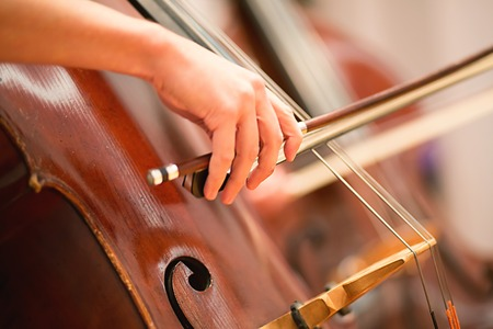 Cello player performing in a symphony orchestra 写真素材